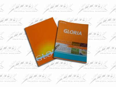 CUADERNO  T/FLEX GLORIA 24 HJ RAY